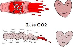 CO2 vasodilation health benefits